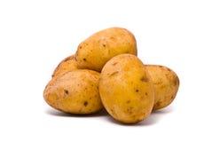 Картошки на белизне студии Стоковая Фотография RF