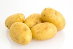 Картошки на белой предпосылке Стоковые Изображения