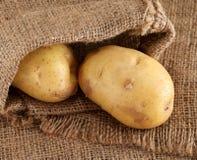 Картошки разливая из сумки мешковины Стоковое фото RF