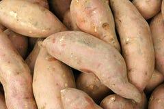 картошки сладостные Стоковое Изображение RF