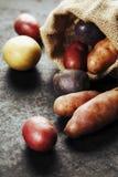 картошки сырцовые Стоковая Фотография
