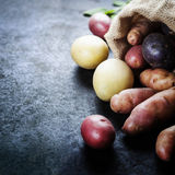 картошки сырцовые Стоковое Изображение