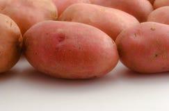 картошки цвета подняли стоковые изображения rf