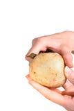 картошки шелушения Стоковые Фото