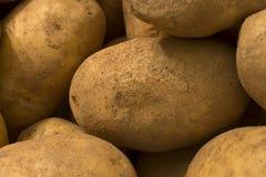 картошки Стоковое фото RF