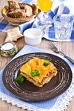 Картошки Graten и семенить мясо Стоковое Изображение RF
