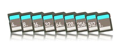 Карты памяти изолированные на белой предпосылке - выстройте в ряд от 4gb к 1t Стоковая Фотография