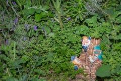 Карлики в траве Стоковая Фотография