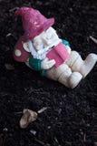 Карлик сада Стоковые Изображения RF