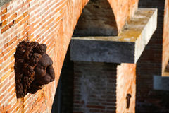 Каса Rossa Ximenes в Тоскане, Италии Стоковое Изображение RF