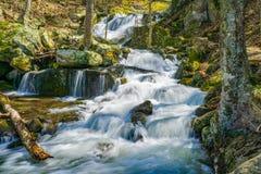Каскадировать водопады Crabtree понижается в горы голубого Риджа Вирджинии, США Стоковое Изображение RF