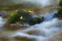 Каскадируя вода потока стоковые изображения rf