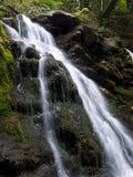 каскадируя вода Стоковое Изображение