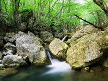 каскадируя вода Стоковое Изображение RF