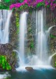 каскадируя водопад Стоковая Фотография