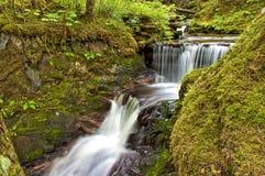 Каскадируя водопад Juneau Аляска Стоковая Фотография RF