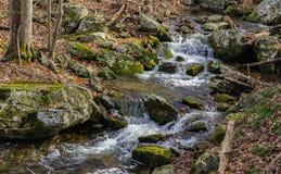 Каскадируя одичалый поток горы Стоковое Изображение RF