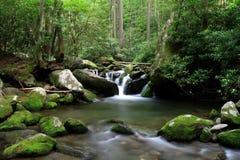 каскадируя поток горы Стоковые Фотографии RF