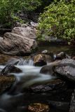 Каскадируя река весеннего времени Стоковое Изображение RF