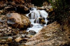 Каскадируя шторка водопада медленная стоковое изображение rf