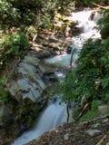 Каскады вдоль реки Catawba в национальном лесе Pisgah стоковая фотография