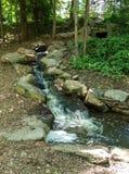 Каскады вдоль реки Catawba в национальном лесе Pisgah стоковые изображения rf