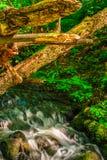 Каскады на реке под ветробоями Стоковое Фото