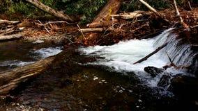 каскадируя гора над потоком утесов Стоковое фото RF