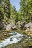Каскадируя поток горы Стоковые Фото