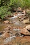 Каскадируя река в Колорадо Стоковое Фото