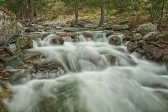 Каскадируя река Tartagine в Корсике Стоковое Изображение