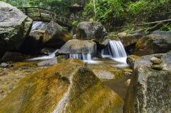 Каскадируя тропическое река окруженное зеленым лесом, намочило и мшистый утес Стоковое Изображение