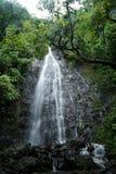 Каскад дождливого дня Стоковые Фото