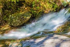 Каскады Fallingwater Стоковое фото RF