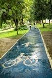 Катание велосипеда на влажной дороге парка Стоковые Фотографии RF