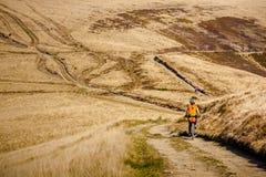 Катание велосипедиста в горах осени Стоковые Фото