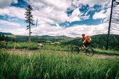 Катание велосипедиста горы задействуя в древесинах и горах Стоковые Изображения RF