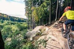 Катание велосипедиста горы задействуя в лесе осени Стоковое Изображение