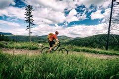 Катание велосипедиста горы задействуя bikepacking в древесинах и горах Стоковая Фотография