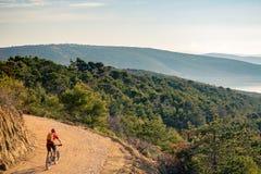 Катание велосипедиста горы на велосипеде в древесинах захода солнца лета Стоковая Фотография