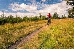 Катание велосипедиста горы задействуя в горах и древесинах Стоковые Фотографии RF