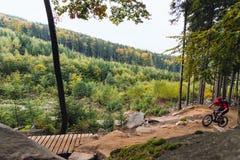 Катание велосипедиста горы задействуя в лесе осени Стоковая Фотография RF