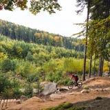 Катание велосипедиста горы задействуя в лесе осени Стоковые Фотографии RF