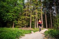 Катание велосипедиста горы задействуя в зеленом воодушевляя лесе Стоковое Фото