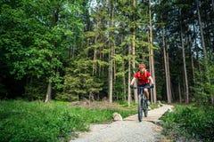 Катание велосипедиста горы задействуя в зеленом лесе Стоковая Фотография RF