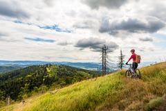Катание велосипедиста горы задействуя в древесинах и горах Стоковое Изображение