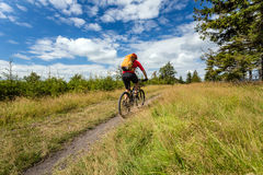 Катание велосипедиста горы задействуя в древесинах и горах Стоковое Фото