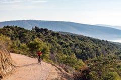 Катание велосипедиста горы на велосипеде в древесинах захода солнца лета Стоковое Изображение RF