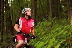 Катание велосипедиста на велосипеде в древесине Стоковая Фотография