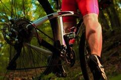 Катание велосипедиста на велосипеде в древесине Стоковое фото RF